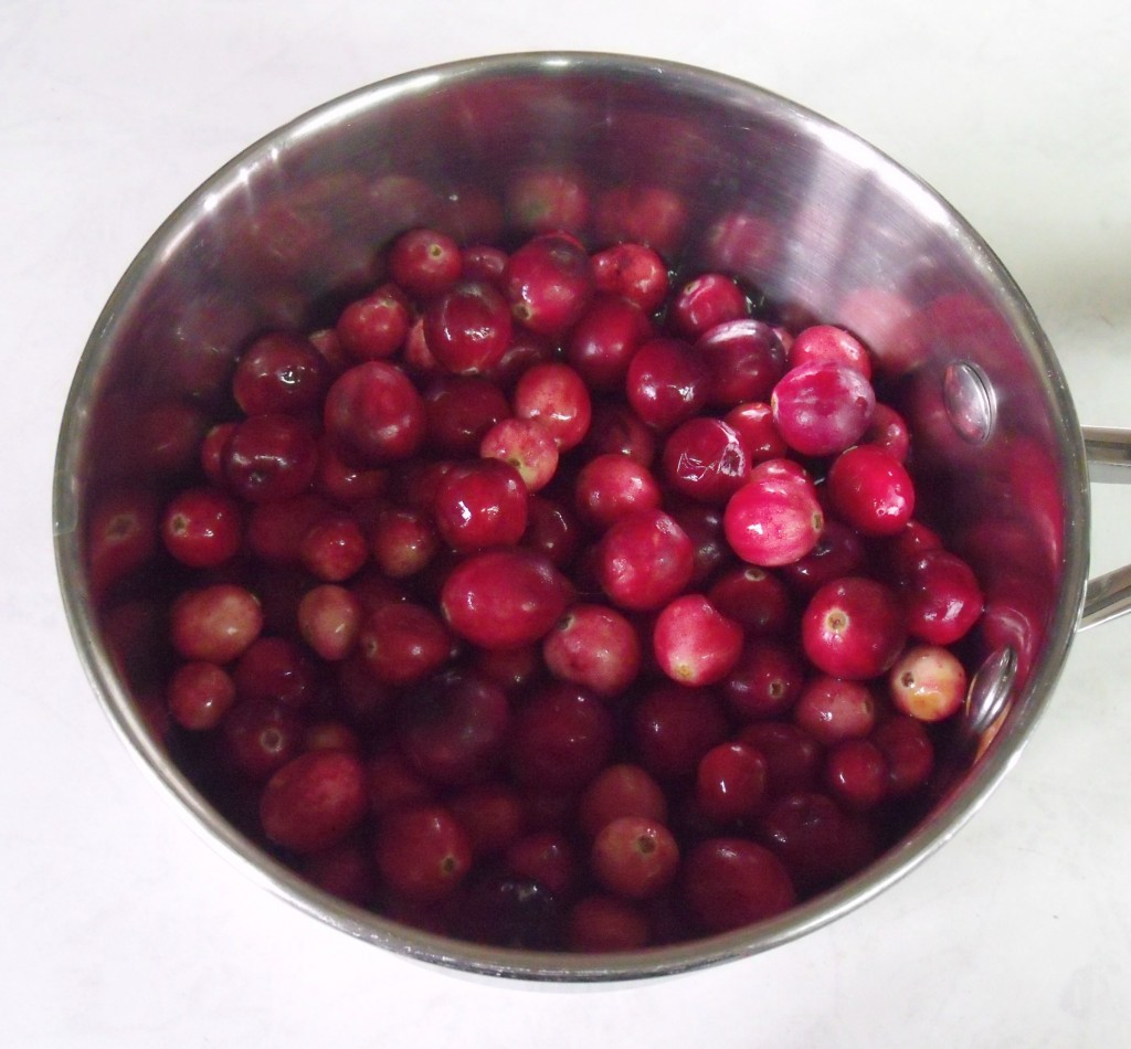 Spiced Cranberry Sauce | How Lovely It Is